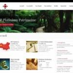Platinium Gestion – Gestion sous mandat de portefeuilles