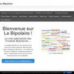 Le Bipolaire : Le syndrome de bipolarité en définition