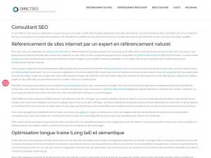 DirectSEO – Consultant en SEO