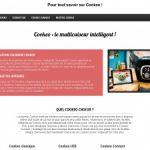 Cookeo-usb.fr, achat de Cookeo en ligne