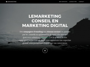 Lemarketing