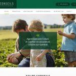 Solre Conseils, banque et assurance à Erquelinnes