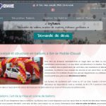Déco en ballons à Douai  : Styl'Ballons