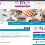 Vlinique vétérinaire du Barlet, la chirurgie pour vos animaux à Douai