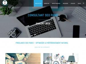 Consultant SEO – Amaury Web